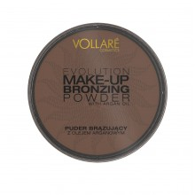Пудра Bronzing Evolution Make-Up № 01